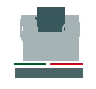 LOGOFOVISSSTE (1)